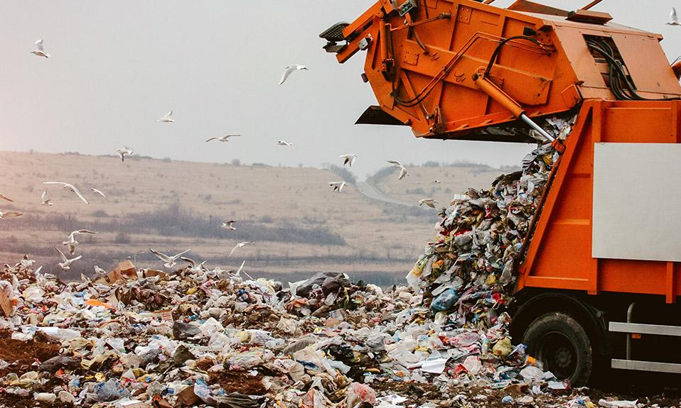 WSM waste material at a landfill